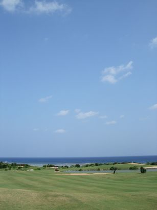 shigira5.jpg