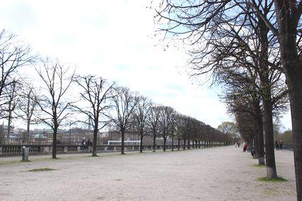 Tuileries4.jpg